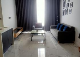 Sarina căn hộ 2PN cần cho thuê giá 1000USD 1995230